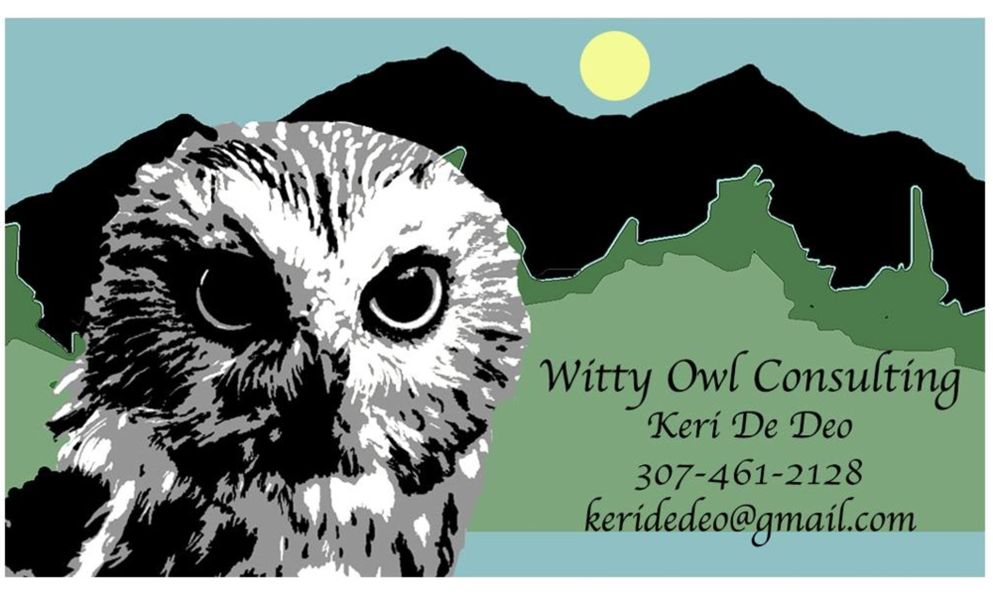 Witty Owl Consulting